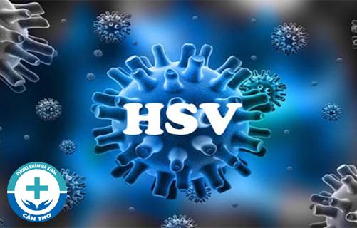 Virus HSV là gì? Nguyên nhân, triệu chứng và các phương pháp xét nghiệm HSV